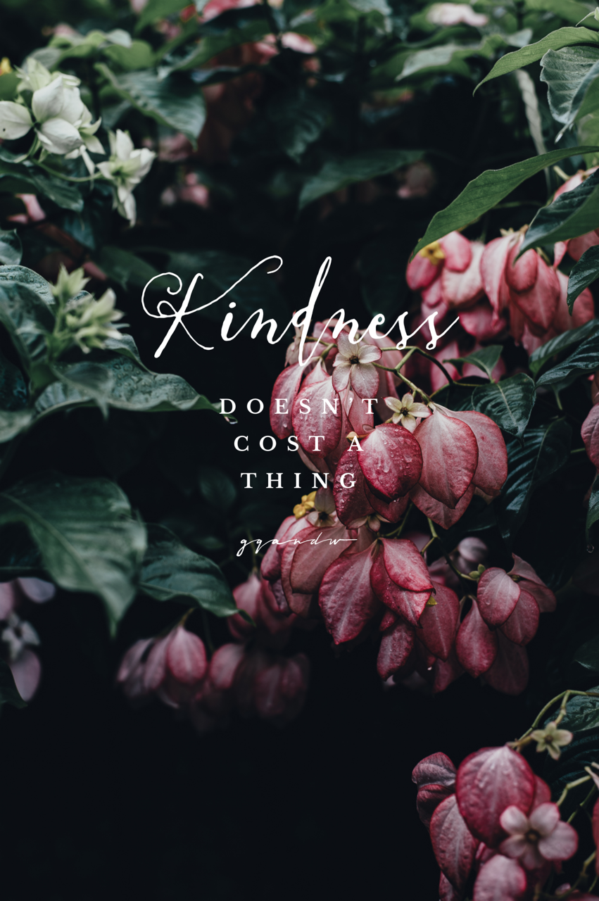 Kindness quotes words sayings sayings pinterest kindness quotes