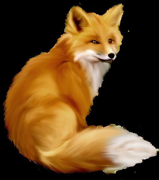 Fox Clipart Google Search Animal Clipart Fox Animals