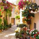 Descopera regiunea Umbria! City break Perugia si Spello: 94 eur/pers (zbor, cazare 3 nopti, transfer) • Aventurescu