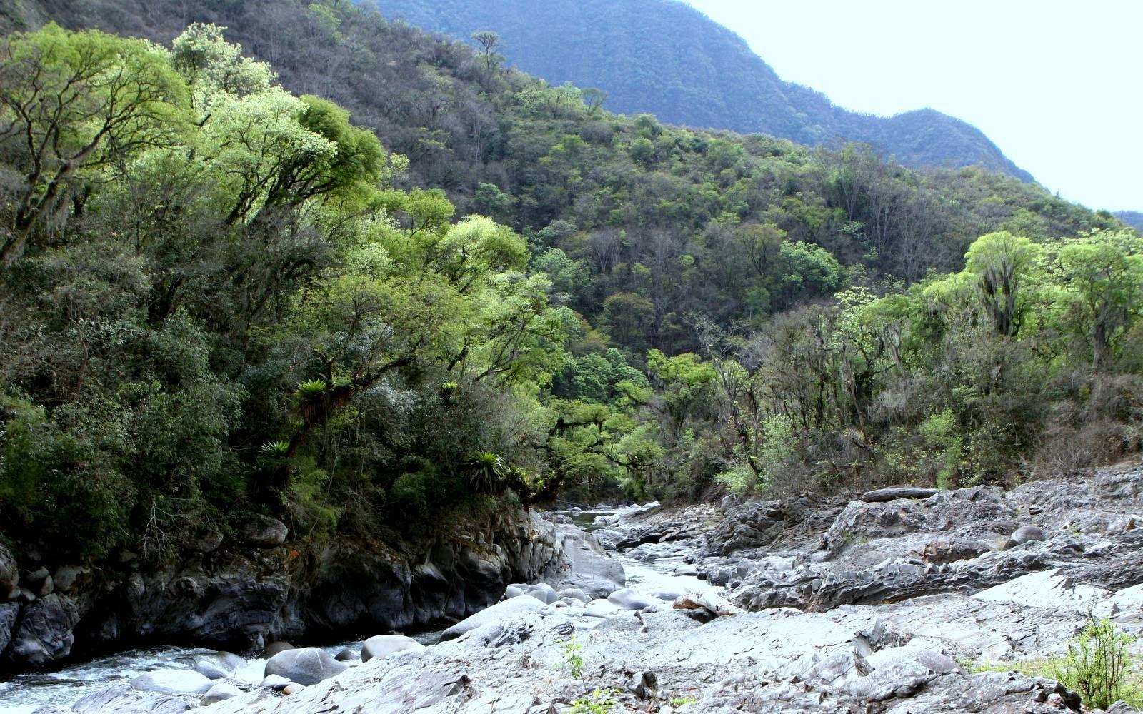 Que es un parque nacional o reserva natural