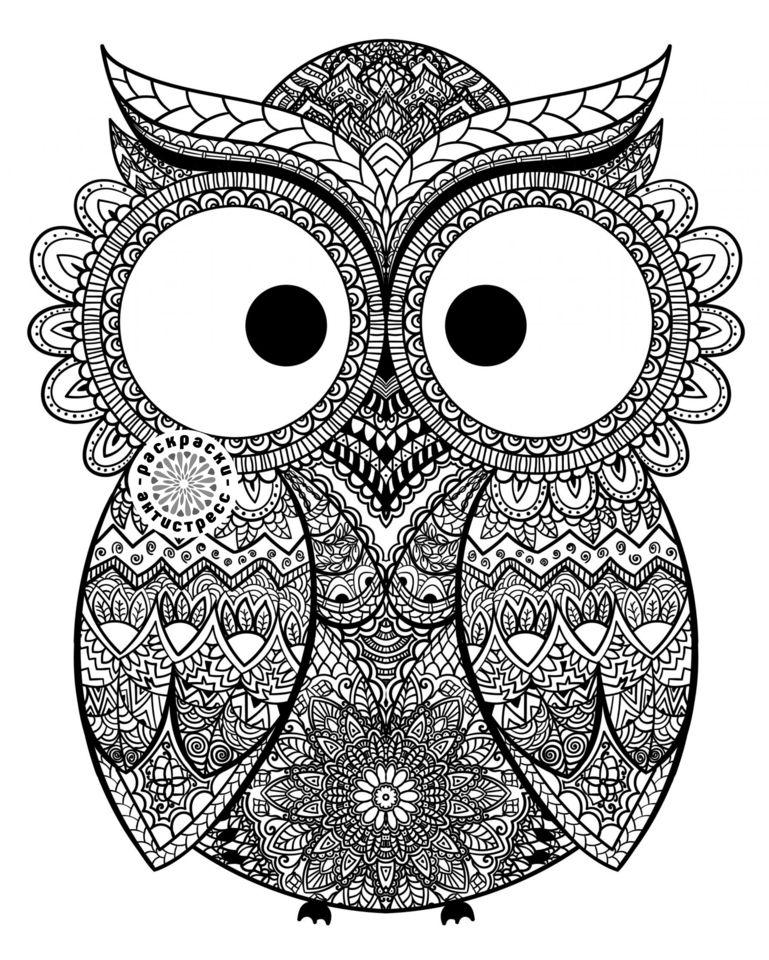 Раскраска антистресс Животные - Сова с большими глазами ...