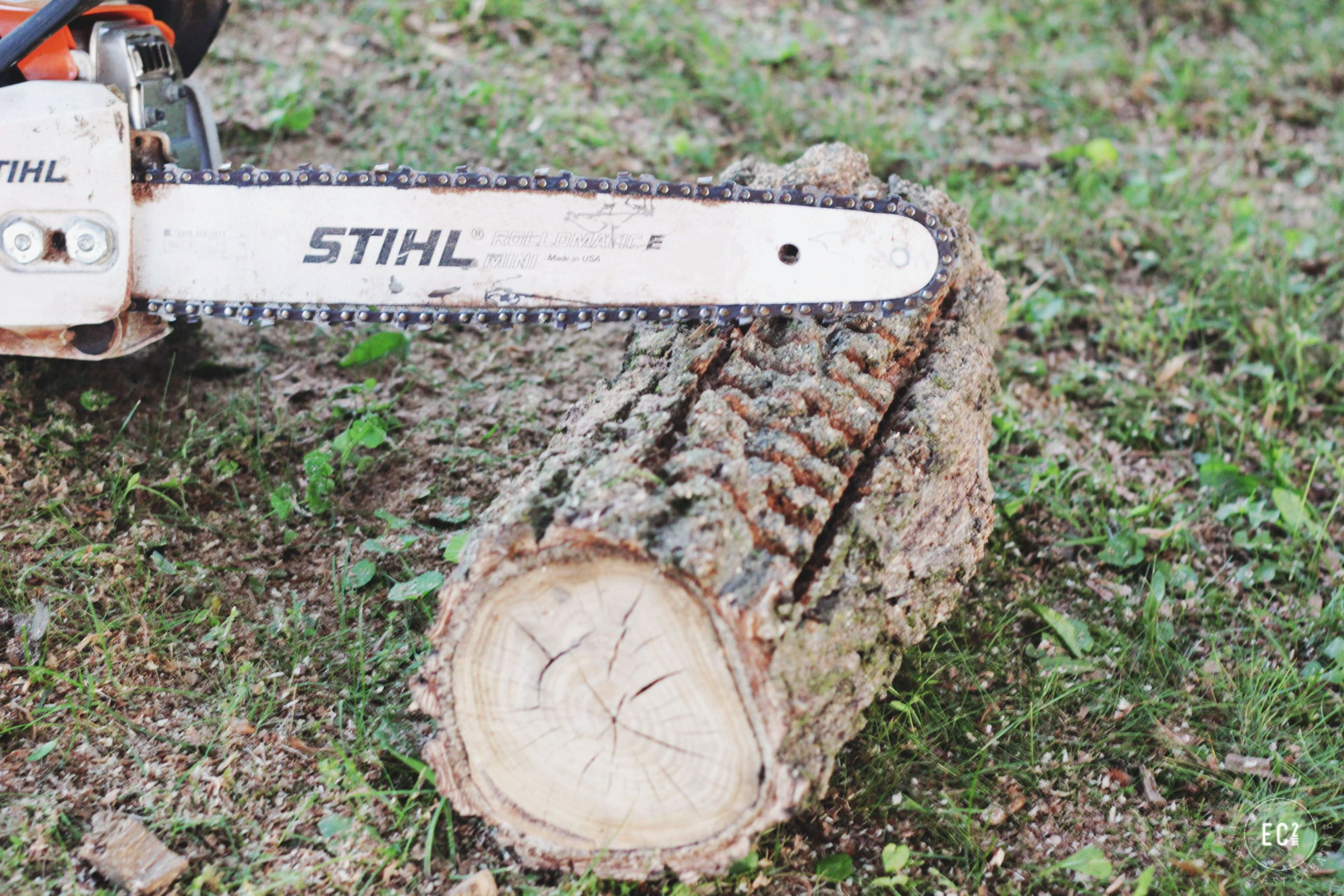 Log Planter DIY