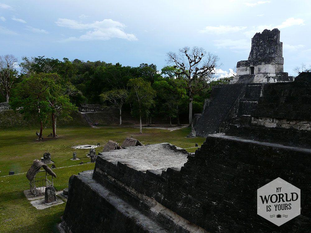 De Maya's bouwden hun trappen niet voor niets; de Goden zijn hier inderdaad dichterbij. #Tikal #Mayas #Guatemala