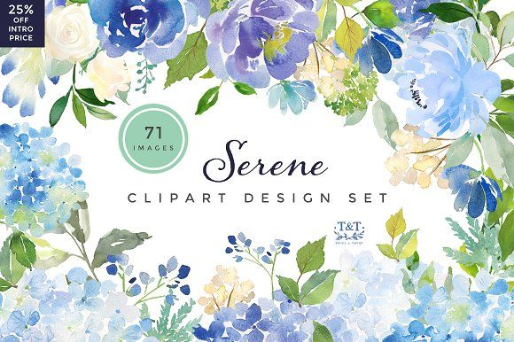 Serene - 25% Off Intro Price by Twigs and Twine on @creativemarket