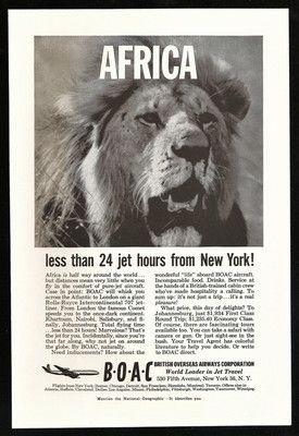 Vintage Ad Wonderful African LION Photo Illustration Advertising!