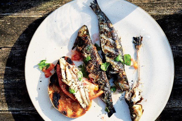 Sardines with Grilled Bread and Tomato recipe | Epicurious ...