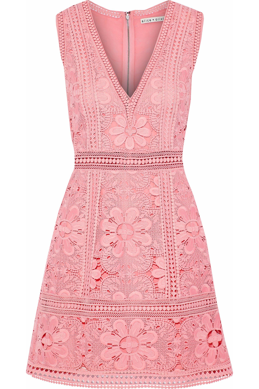 Zula guipure lace mini dress