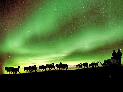 See the Aurora Borealis while dogsledding