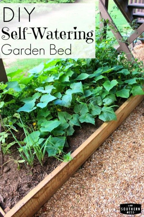 Self Watering Garden Bed Beds