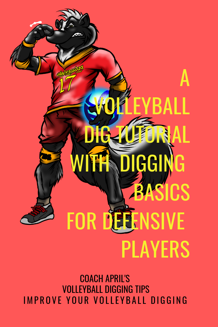 A Volleyball Dig Tutorial With Digging Basics For Defensive Players Volleyball Libero Volleyball Volleyball Practice