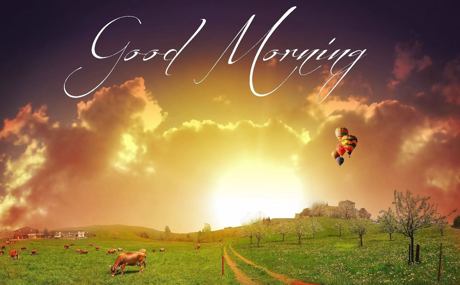Wallpaper download morning - 50 Best Good Morning Picture Photos Images Quotes And Wallpapers Free Download