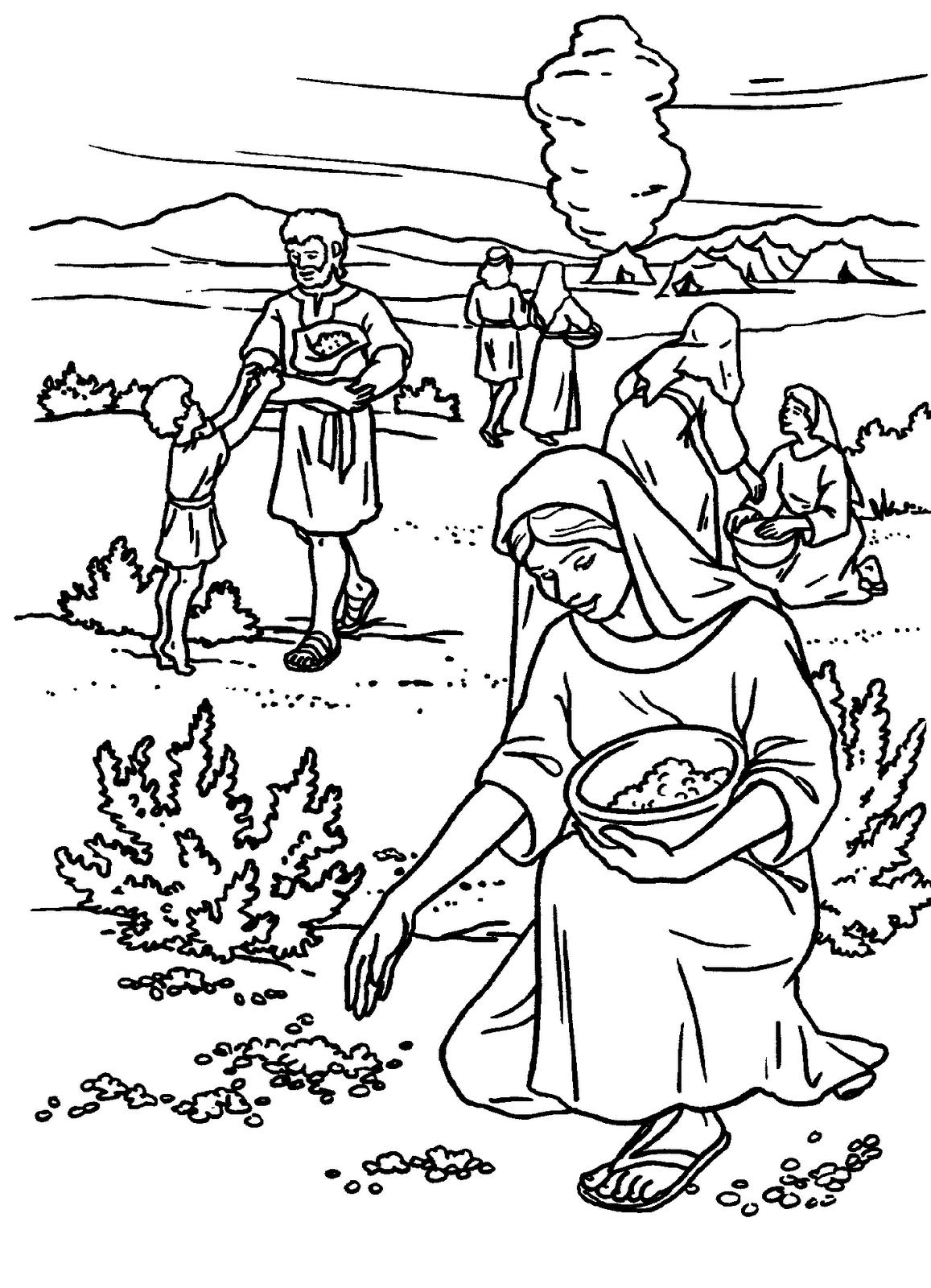 Dibujo del Pueblo de Israel recogiendo maná para colorear | Bible ...
