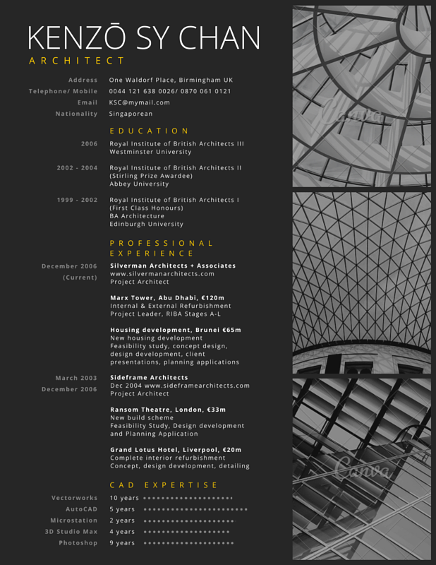 Professional Architect Resume  Canva  Cv    Architect