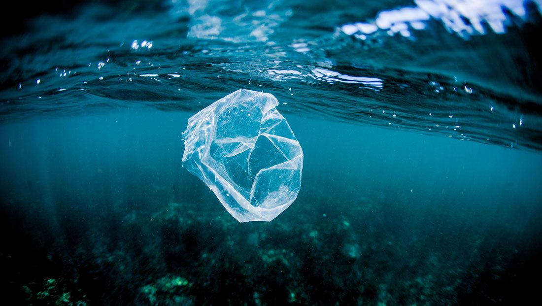 10 Tips to Eliminating Plastics From Your Every Day Life — earthyandy