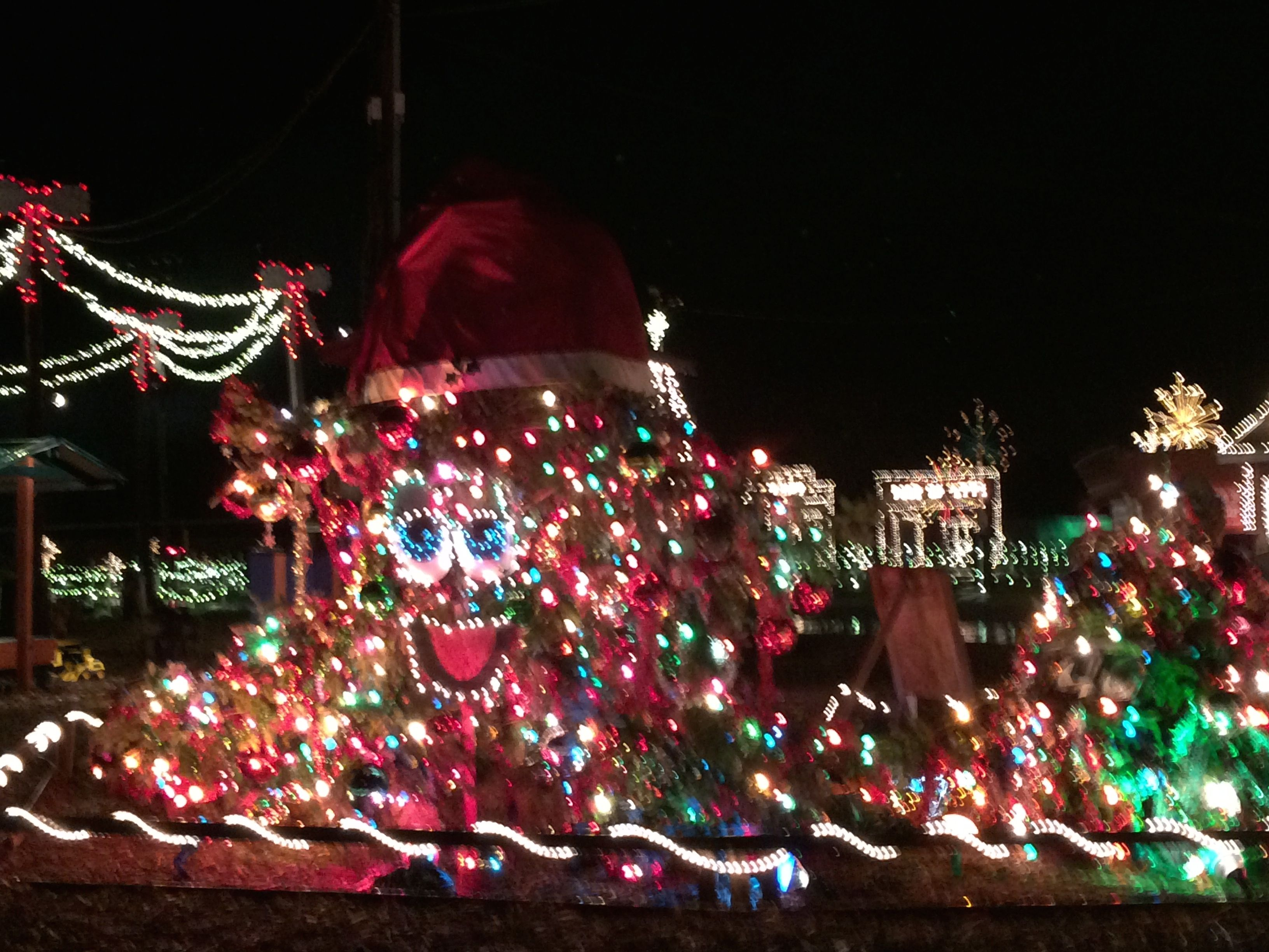 Overlys Christmas Lights.It S Henny Hemlock The Talking Christmas Tree At Overly S