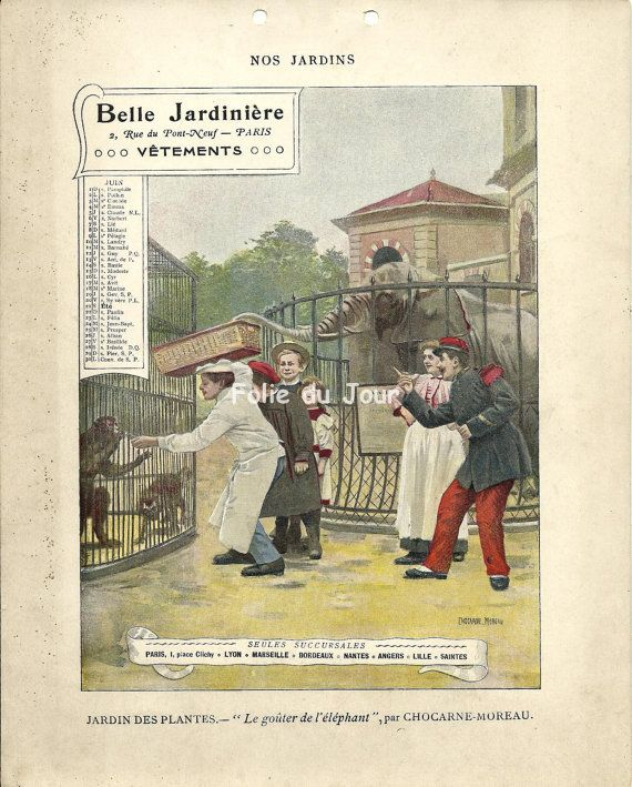 Illustrated Poster Belle Epoque Zoo Elephant Calendar June 1902