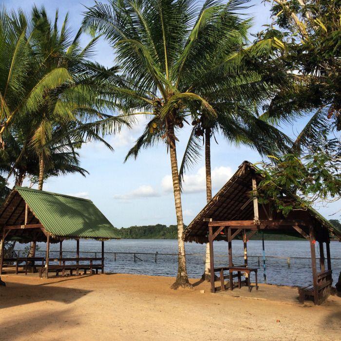 Beautiful Beach At Overbridge Suriname