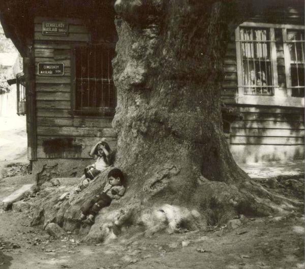 Trees love children ...;)