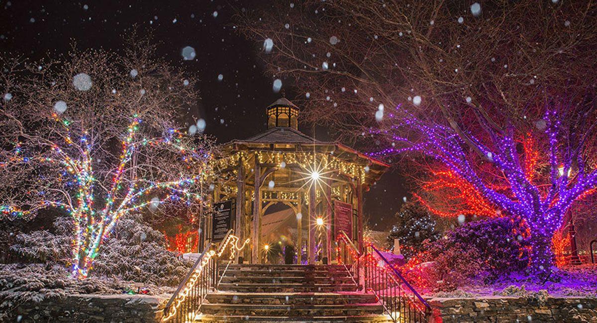 Impressive 20 unique christmas tree lights in 2020