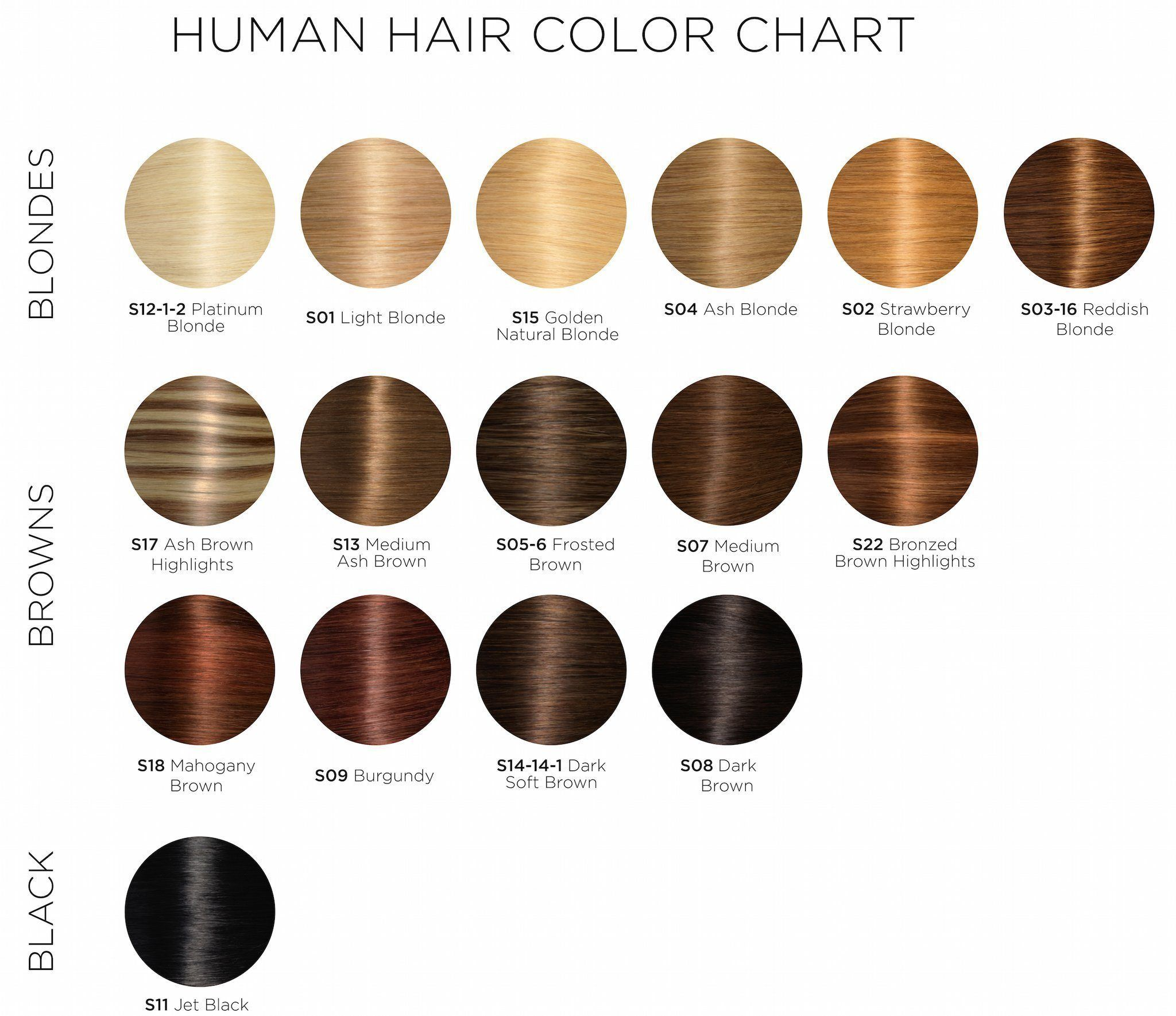Pin By Mendezsugeily On Hair In 2021 Hair Color Chart Glamour Hair Hair Color