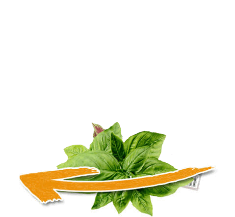 BioFluxe Keto | 30 Day Kit! | Keto, Ketosis fast, How to ...
