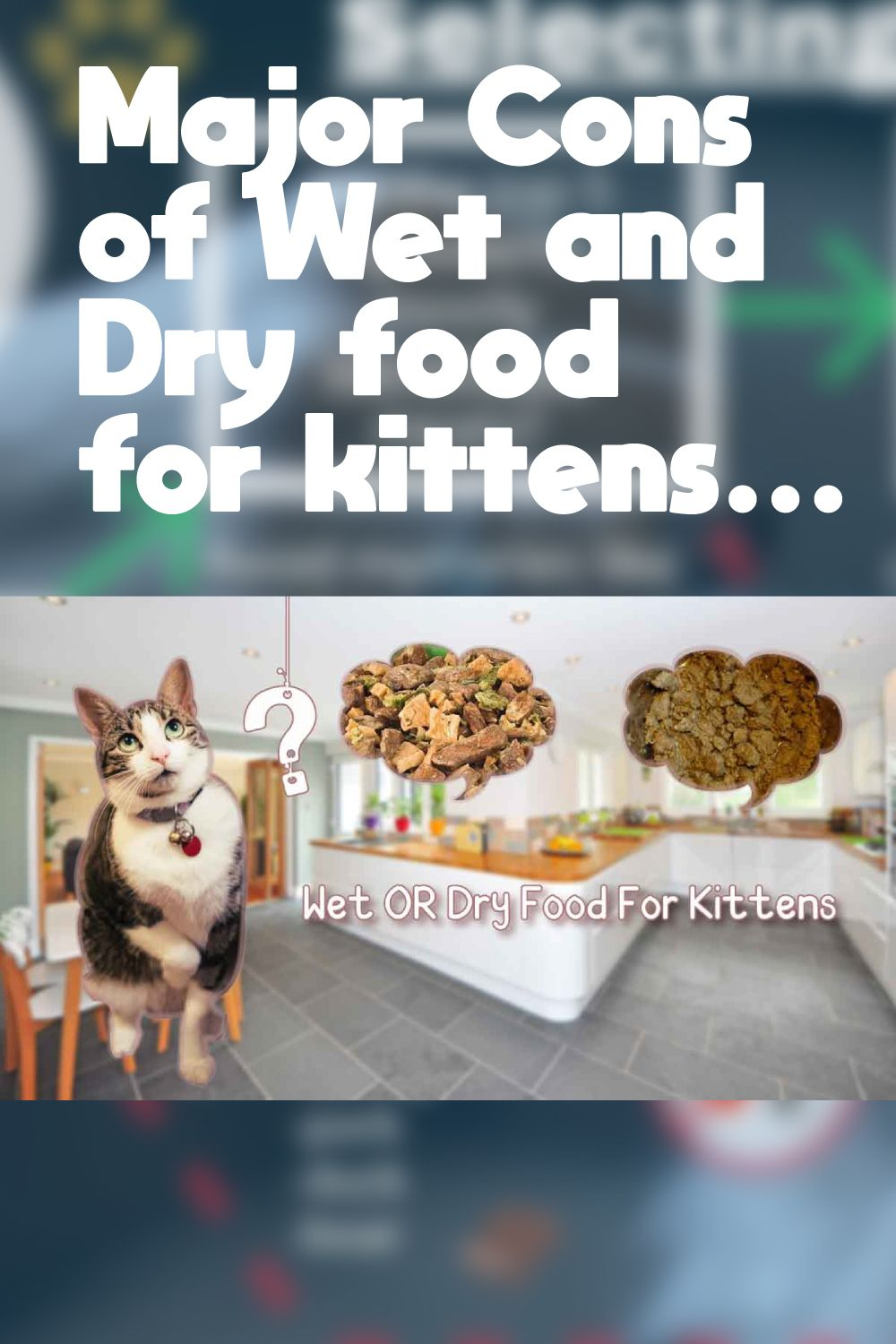 Wet Or Dry Food For Kittens Mypetguides 2020 In 2020 Best Cat Food Cat Food Brands Feeding Kittens