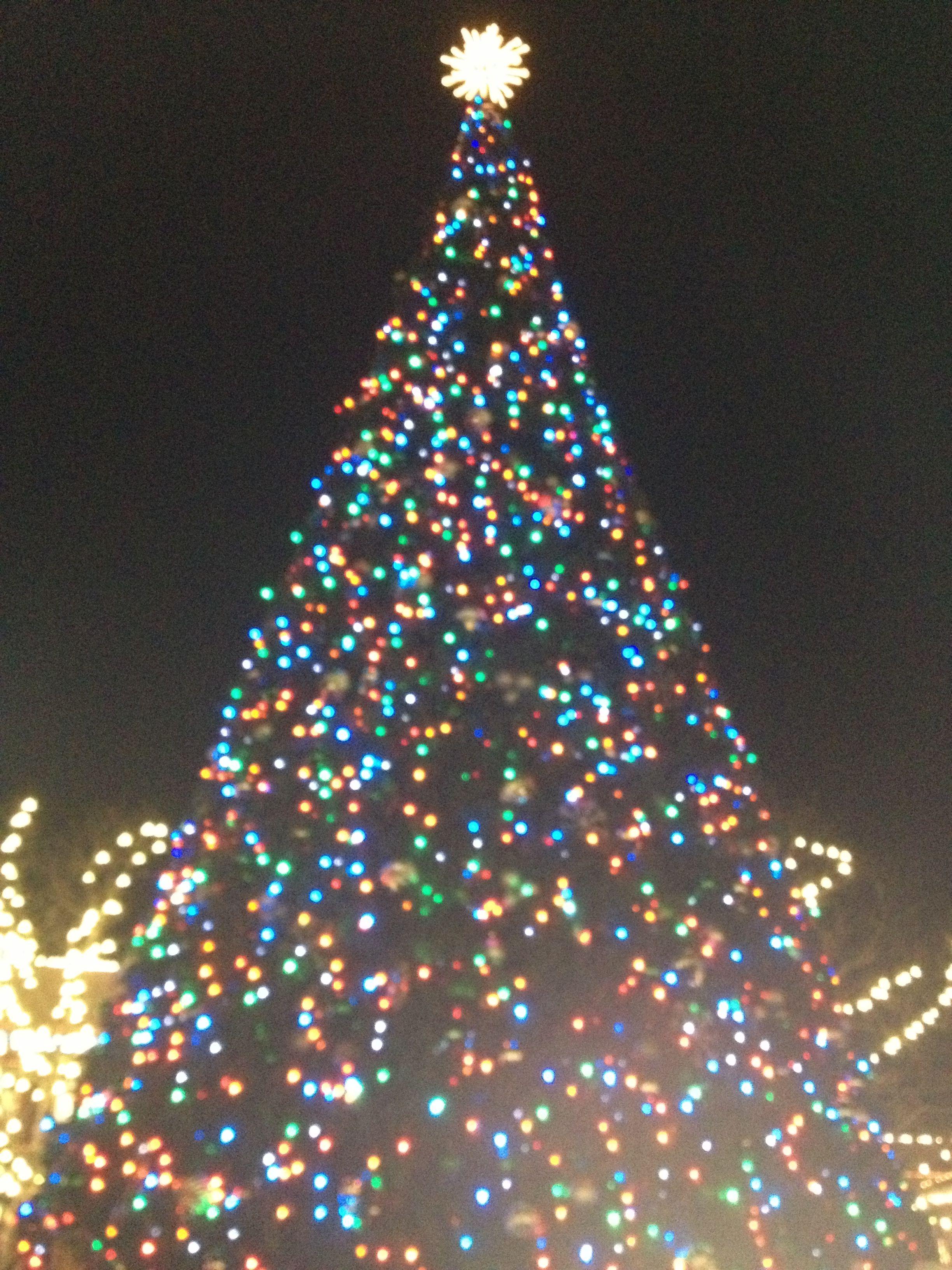 Christmas Tree At Easton In Columbus Ohio Christmas Bulbs Christmas Ornaments Christmas Pictures