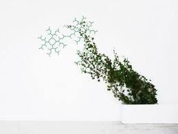 jardins verticais em trelis - Pesquisa do Google