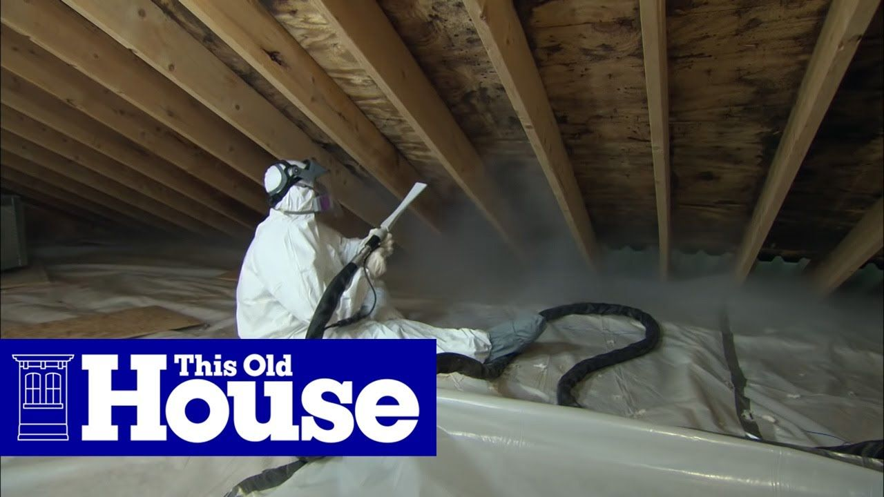 How To Clean Up Attic Mold In 2020 Old Houses Old House Mold Remover