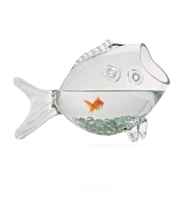 Whimsical (fish) habitat: check out this fun fish (or party punch) bowl !