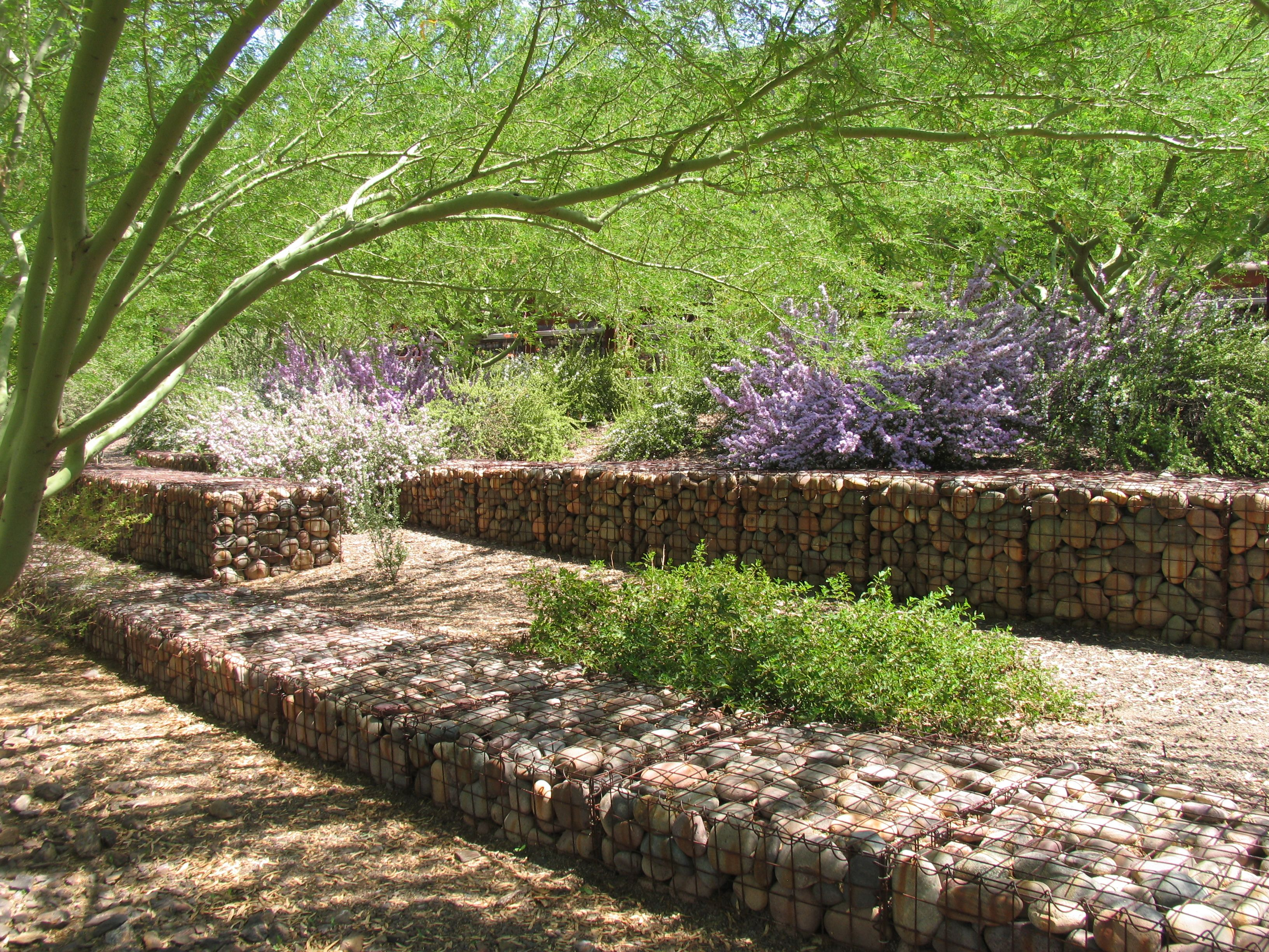 Gardens Demonstrate the Beauty of Xeriscape | Xeriscape ...