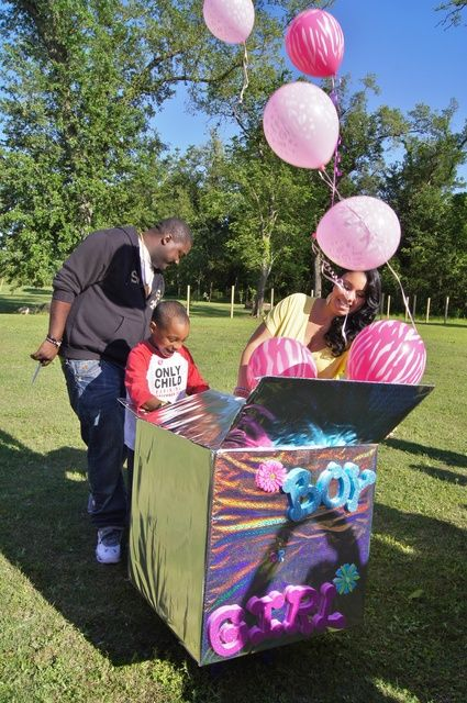 Pink And Blue Gender Reveal Party Ideas