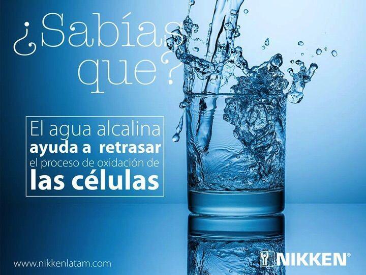 Es Importante Tomar Agua Alcalina Que Significa No ácida En Un Agua Alcalina Hay Oxigeno Que Alimenta Y Re Beneficios De Tomar Agua Agua Alcalina Alcalina