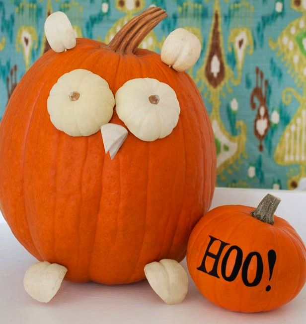 Owl Pumpkin Jack-O-Lantern Decorating Ideas Halloween - halloween pumpkin decorations