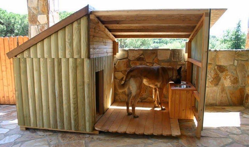 33 Ideas de guaridas y camas para consentir a tus mascotas. - Vida Lúcida