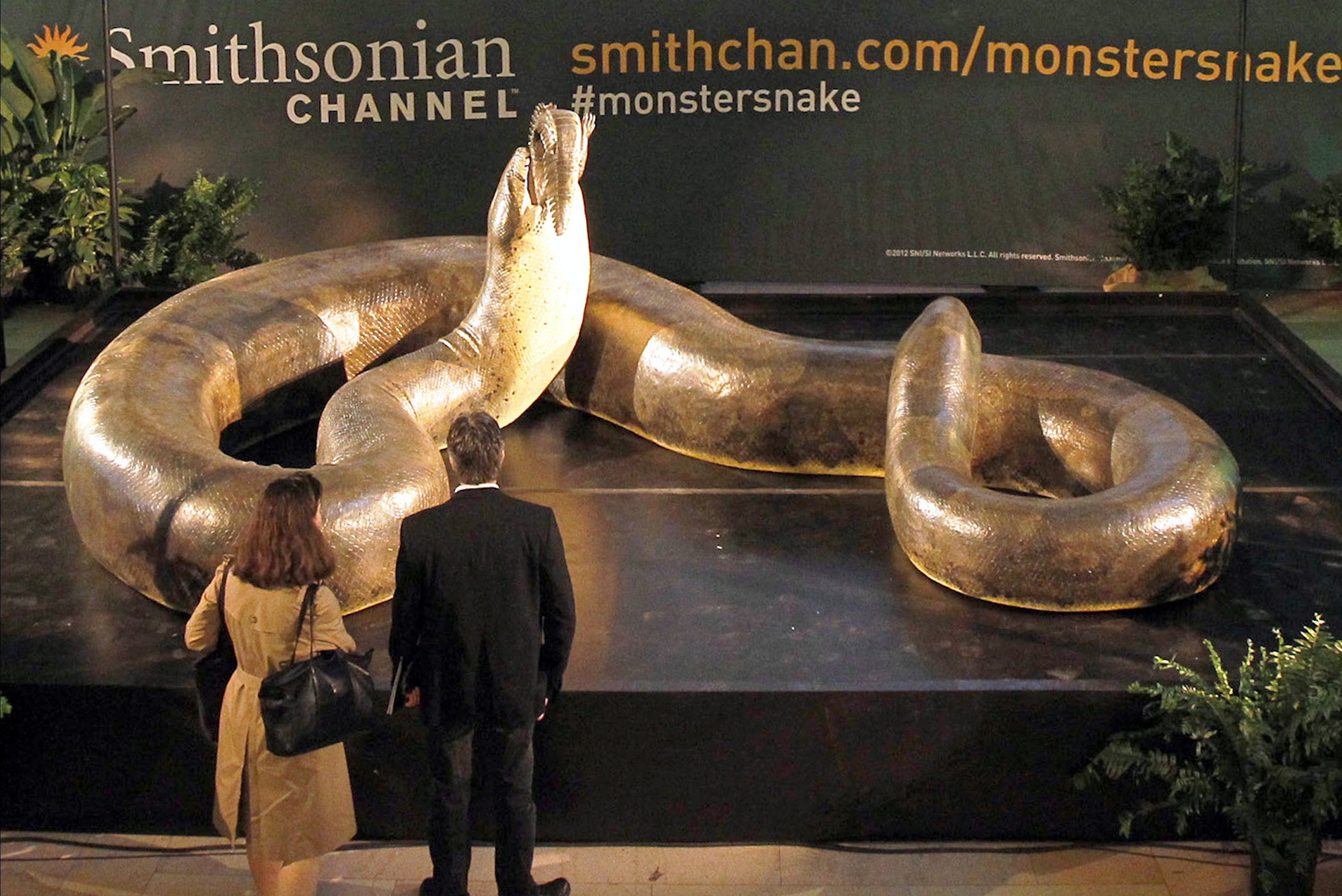 Titanoboa | gone but never forgotten | Pinterest | The o'jays, Of ...