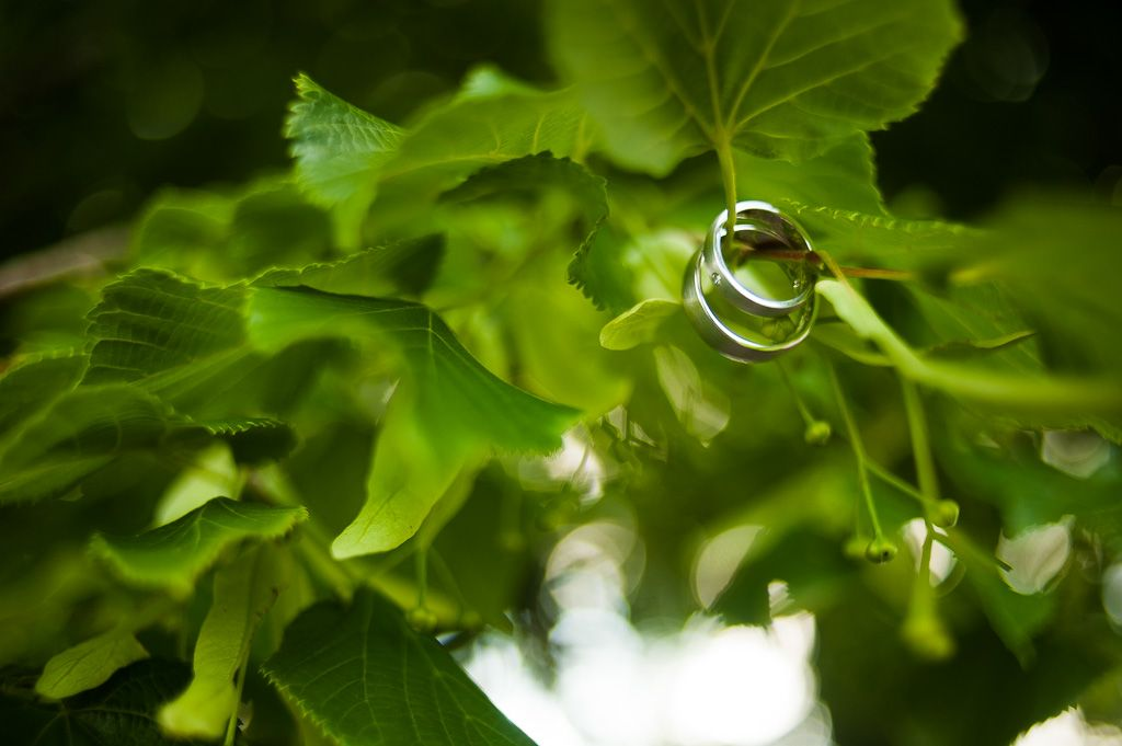 #Weddingrings