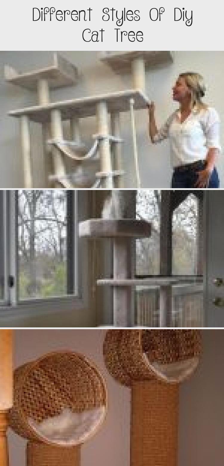 Different Styles of DIY Cat Tree - Diana Phoneix #Outdoorcatplaygrounds #Cat #cats #DIY #Styles #tree