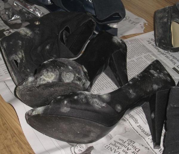comment enlever des taches de moisi sur vos chaussures. Black Bedroom Furniture Sets. Home Design Ideas