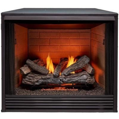 Procom 36 In Ventless Gas Firebox Insert In 2020 Vented Gas