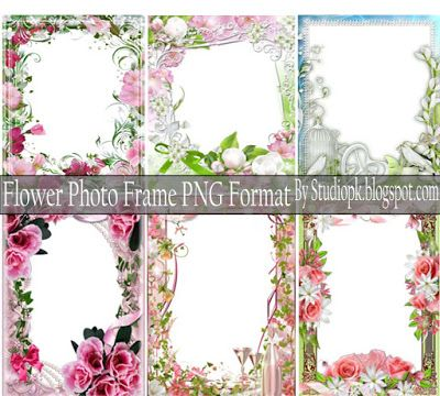 Flower Photo Frame Png Format Free Download | Luckystudio4u | Pinterest