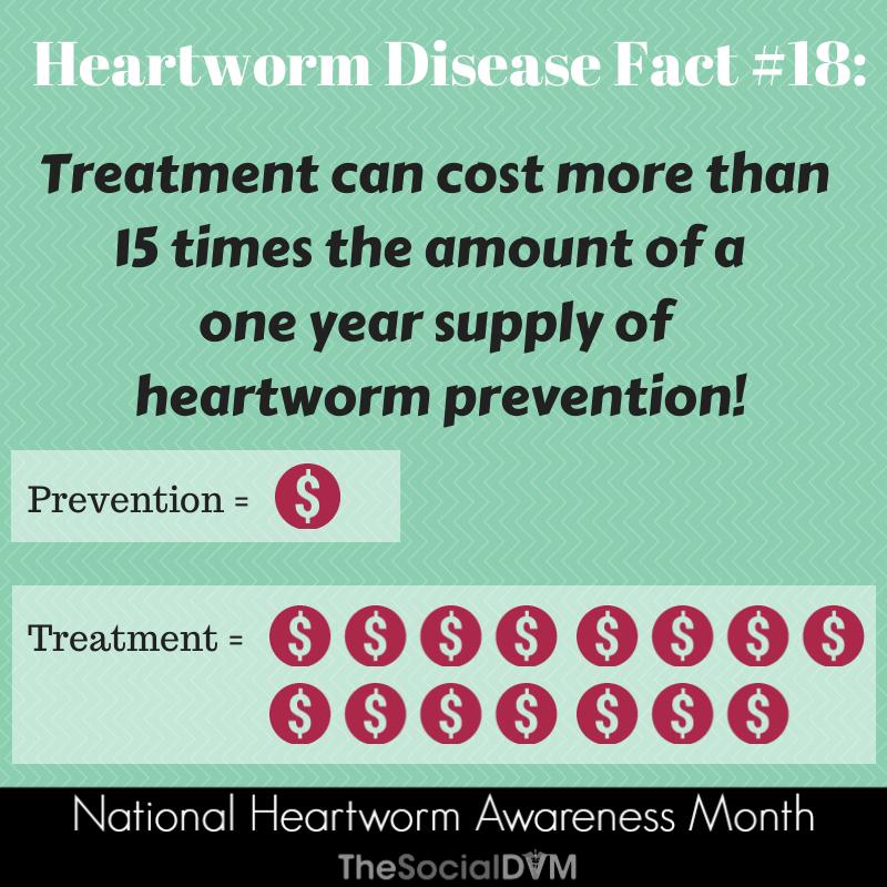 Heartworm Awareness Month Heartworm Awareness Heartworm Veterinary Humor