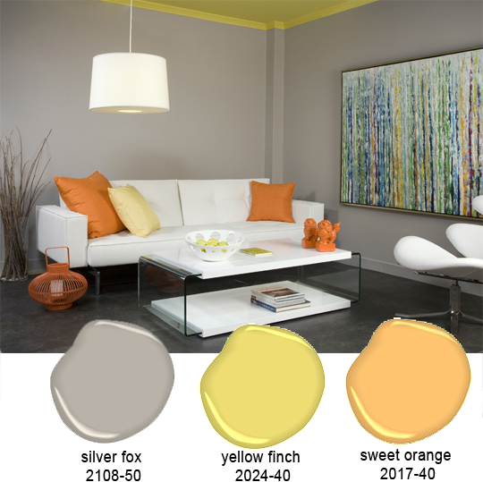 Silver Fox And Orange Living Room   Color Inspiration For The Office. One  Word LOVE Part 41