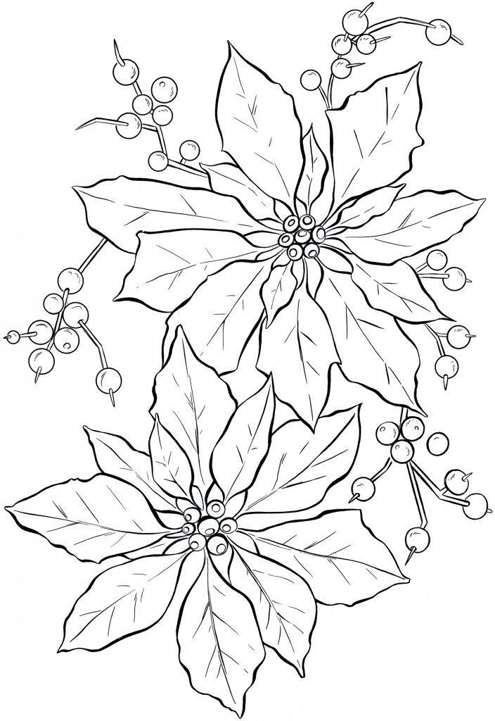 Poinsettia Line Art - Christmas | Ausmalbilder, Vorlagen und Weihnachten