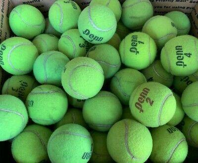 100 Used Tennis Balls Dog Toys Treats Low Price Penn Wilson In 2020 Tennis Tennis Balls Play Fetch