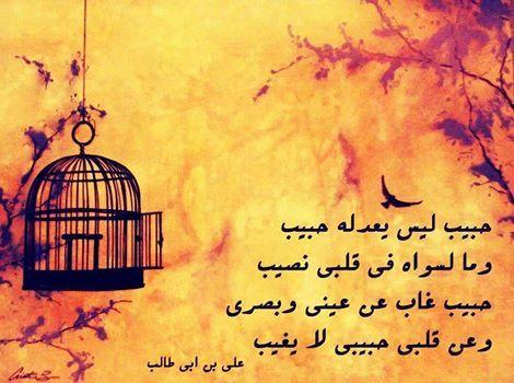 قاله على قبر مولاتي فاطمة الزهراء عليها السلام Imam Ali Quotes Arabic Quotes Ali Quotes