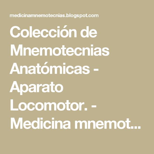 Colección de Mnemotecnias Anatómicas - Aparato Locomotor. - Medicina ...