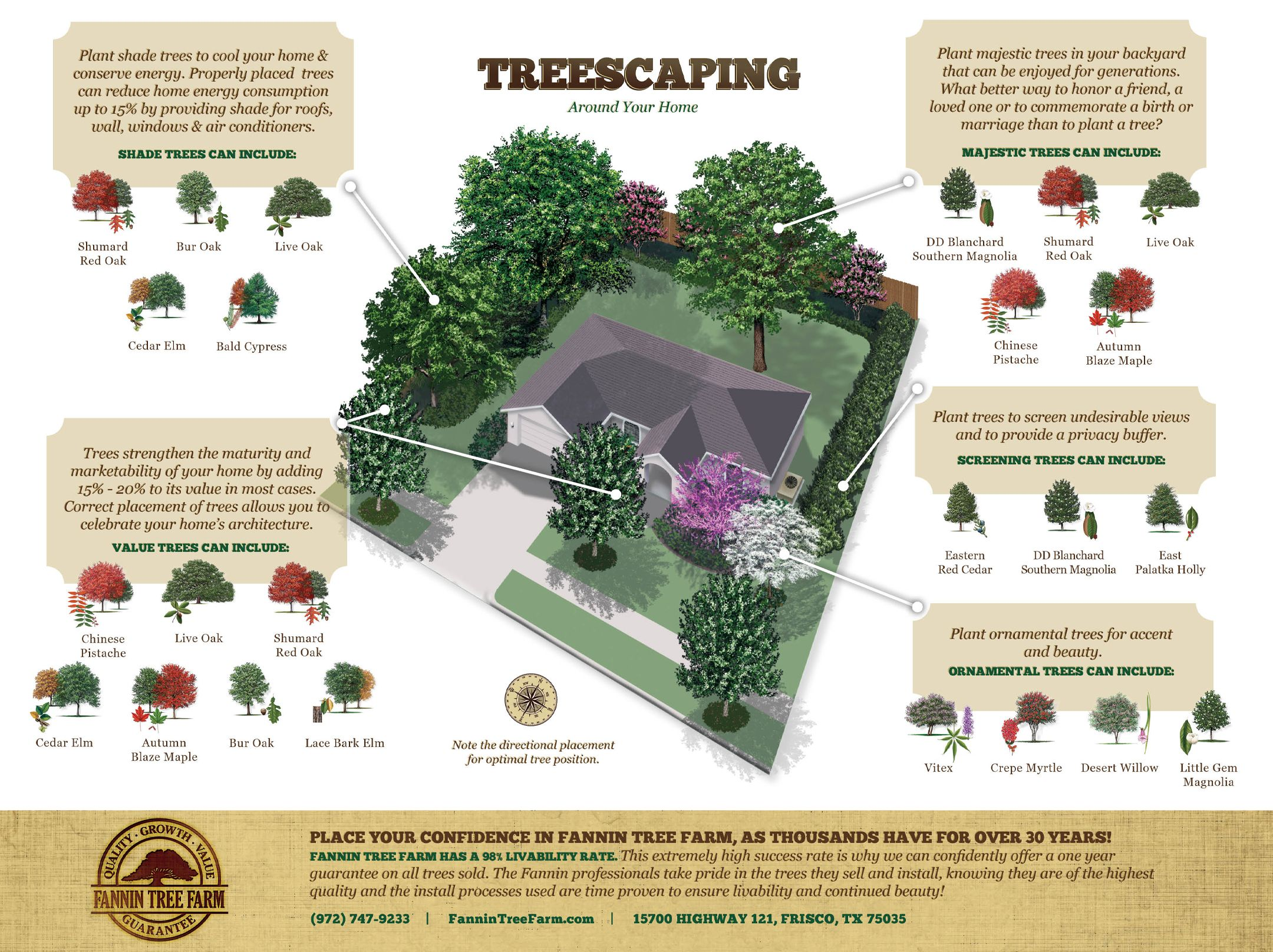 Shade Trees Plant Shade Trees To Cool Your Home Conserve Energy Properly Placed Trees Can Reduce Home Landscaping Trees Trees To Plant Trees For Front Yard