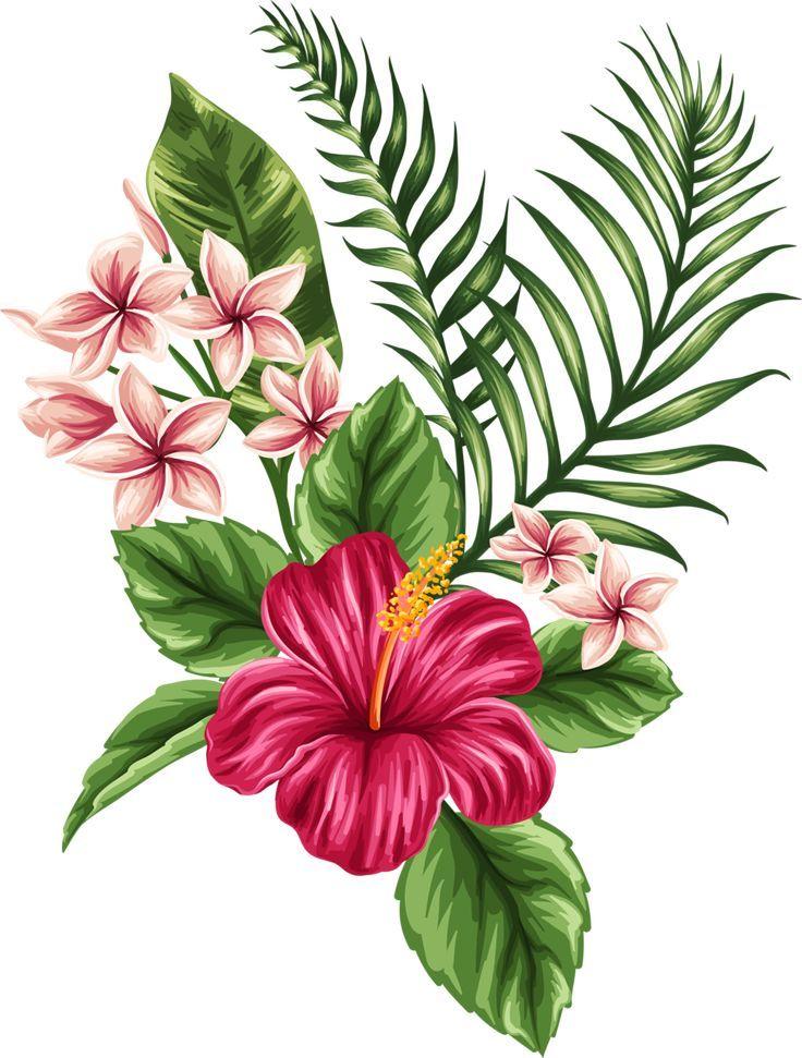 18ab56ba4cd2921d802d59f27801d7dd Hawaiian Hibiscus Tattoo Tropical Flowers Tattoo Jpg 736 971 Flower Drawing Flower Art Flower Painting