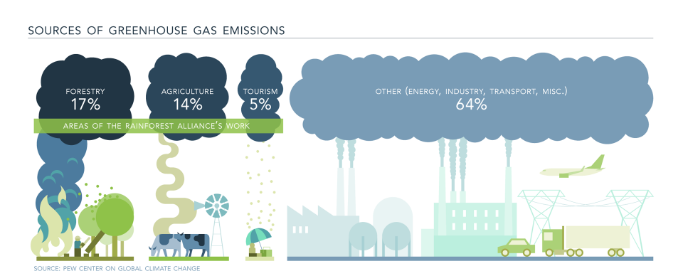 Curbing Climate Change | Rainforest Alliance | infographics ...